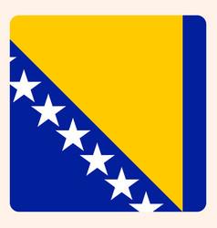 bosnia herzegovina square flag button social vector image