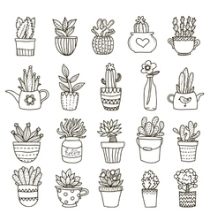 Domestic Plants Icon Set vector image