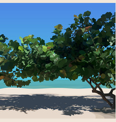 Landscape sunny sandy beach with tropical tree vector