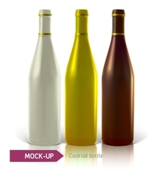 Set of cocktail bottles vector