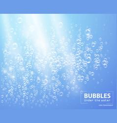 bubbles under water vector image vector image