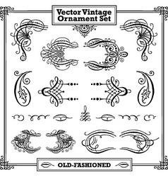 vector vintage ornament set vector image
