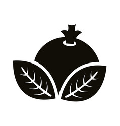 Autum ovates leafs with seed silhouette style icon vector