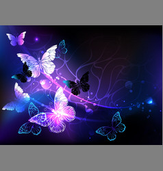 Background with night butterflies vector