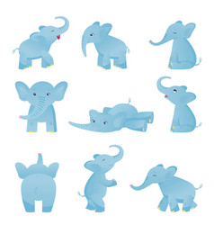 collection of cute baby elephant in different vector image