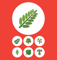 flat icon natural set of garden jungle vector image