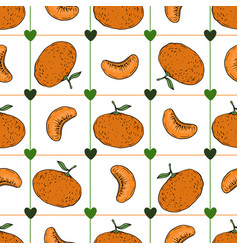 Hand draw tangerine seamless pattern on white vector