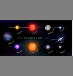 Life cycle a star vector