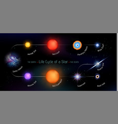 Life cycle of a star vector