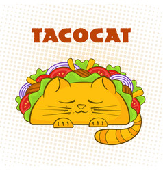taco cat sleeping character mexican fastfood tacos vector image