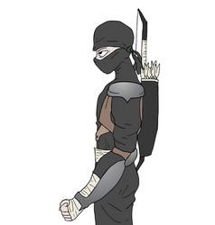 black ninja vector image