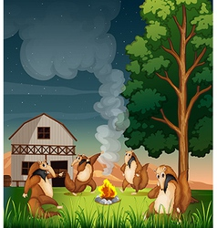 Playful wild animals making a campfire vector image vector image