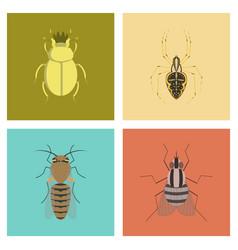 assembly flat bug scarab araneus bee vector image