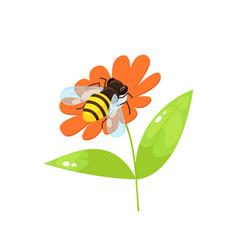 Bee in cartoon style vector