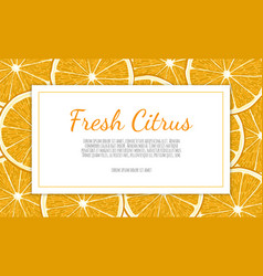 citrus banners design for juice tea ice vector image