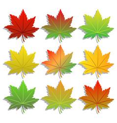 Colorful maple leaf set vector