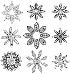 Floral Elements Set vector image