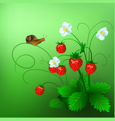 Ripe wild strawberry and a vector