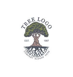 vintage tree logo design templ vector image