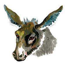 Artistic donkey design vector