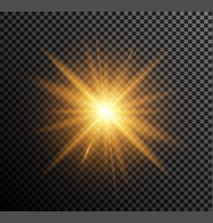 golden light vector image