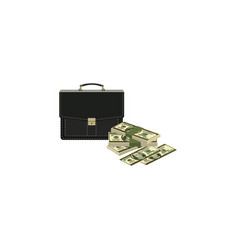 money and case vector image