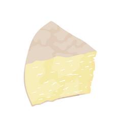 italy cheese pecorino vector image vector image