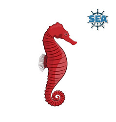 sea horse on a white background in a cartoon style vector image vector image