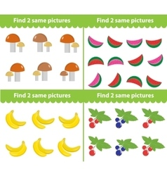 Children s educational game Find two same vector