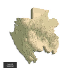gabon map - 3d digital high-altitude topographic vector image