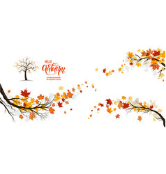 nature fall branches vector image