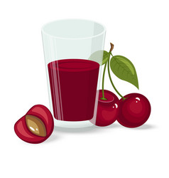 ripe cherries on a white vector image