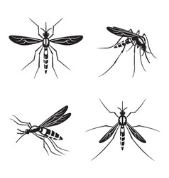 Set mosquito vector