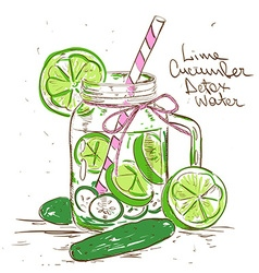 Sketch of Lime Cucumber Detox water vector