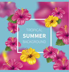 Summer background with hibiscus vector