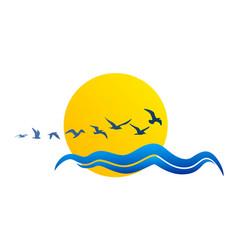 Sun logo with seagulls vector