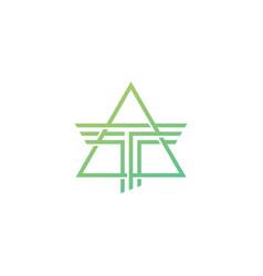 T letter triangle logo icon symbol vector