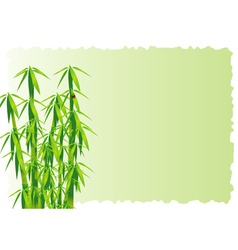 Bamboo decorative element vector image