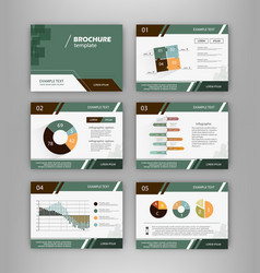 brochure template set with infographics elements vector image