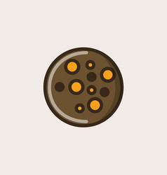Choco chip cookie with orange and chocolate vector