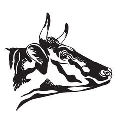 contour portrait bull in profile vector image
