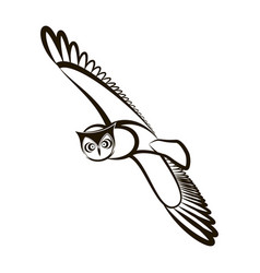Hand drawn owl opened wings black white plumage vector