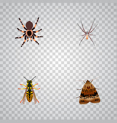 Set of insect realistic symbols with arachnid vector