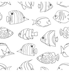 tropical fish black white seamless pattern vector image