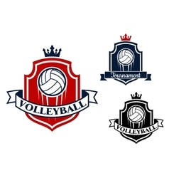 Volleyball game sports banner or emblem vector image