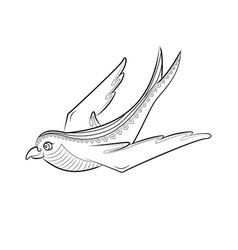 Zen tangle swallow zentangle bird color vector