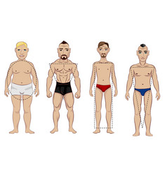 types of male figure vector image