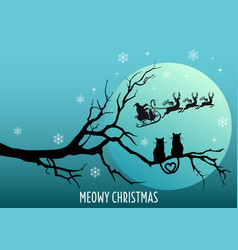 cats watching santa claus christmas card vector image