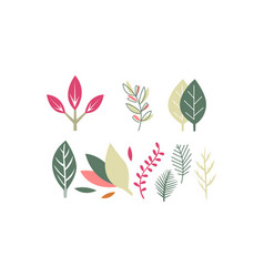 flat set of leaves of different plants vector image