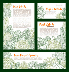 Fresh farm salad vegetables sketch poster vector
